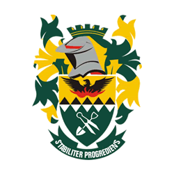 Msukaligwa Local Municipality Tenders