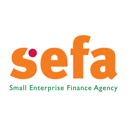 Small Enterprise Finance Agency Tenders