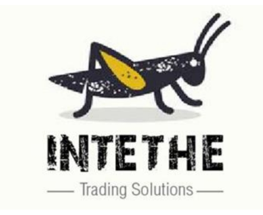 Business Listing for Intethe Trading Solutions PTY (LTD)